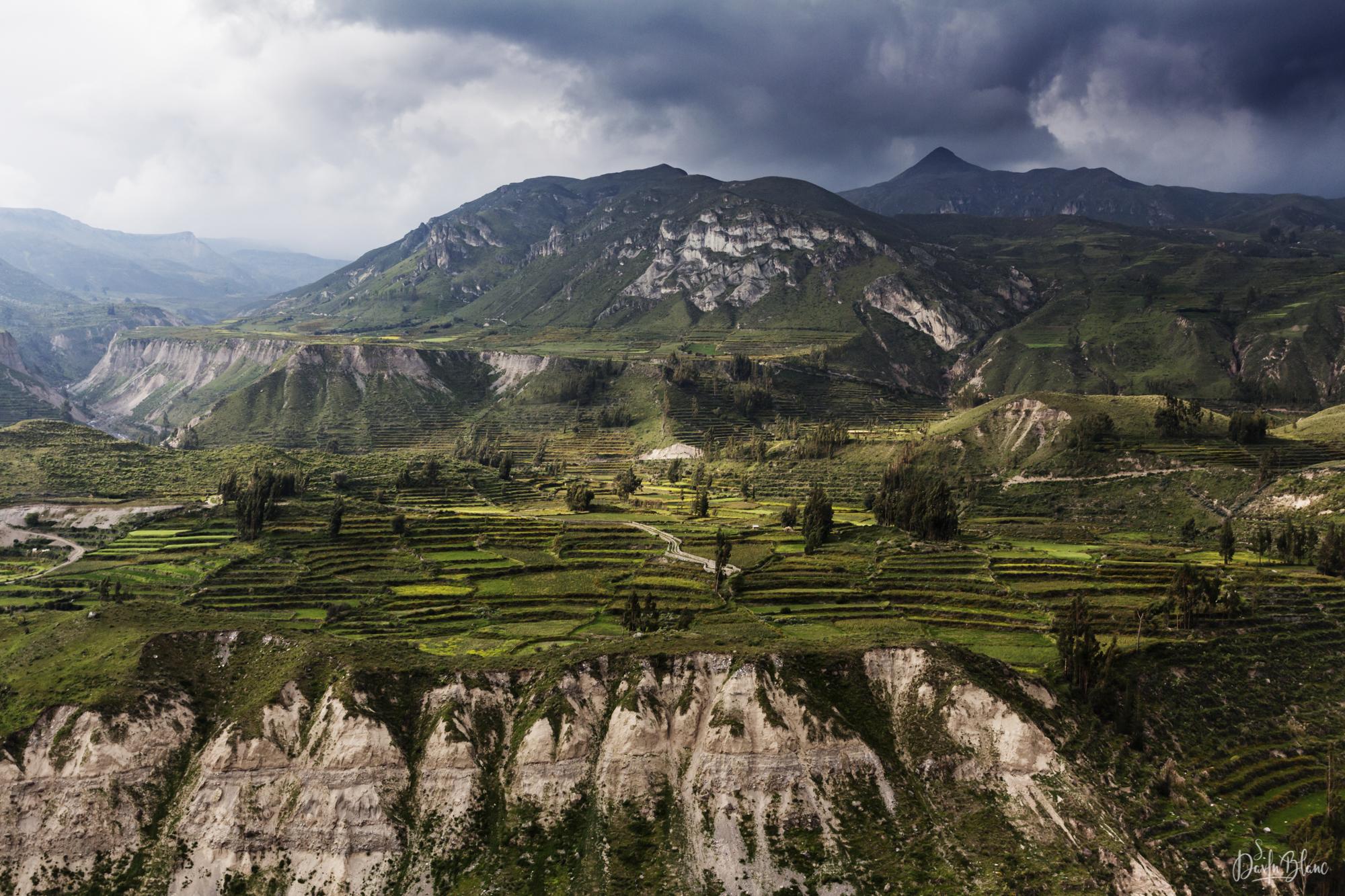 cultures en terrasses datant époque incas
